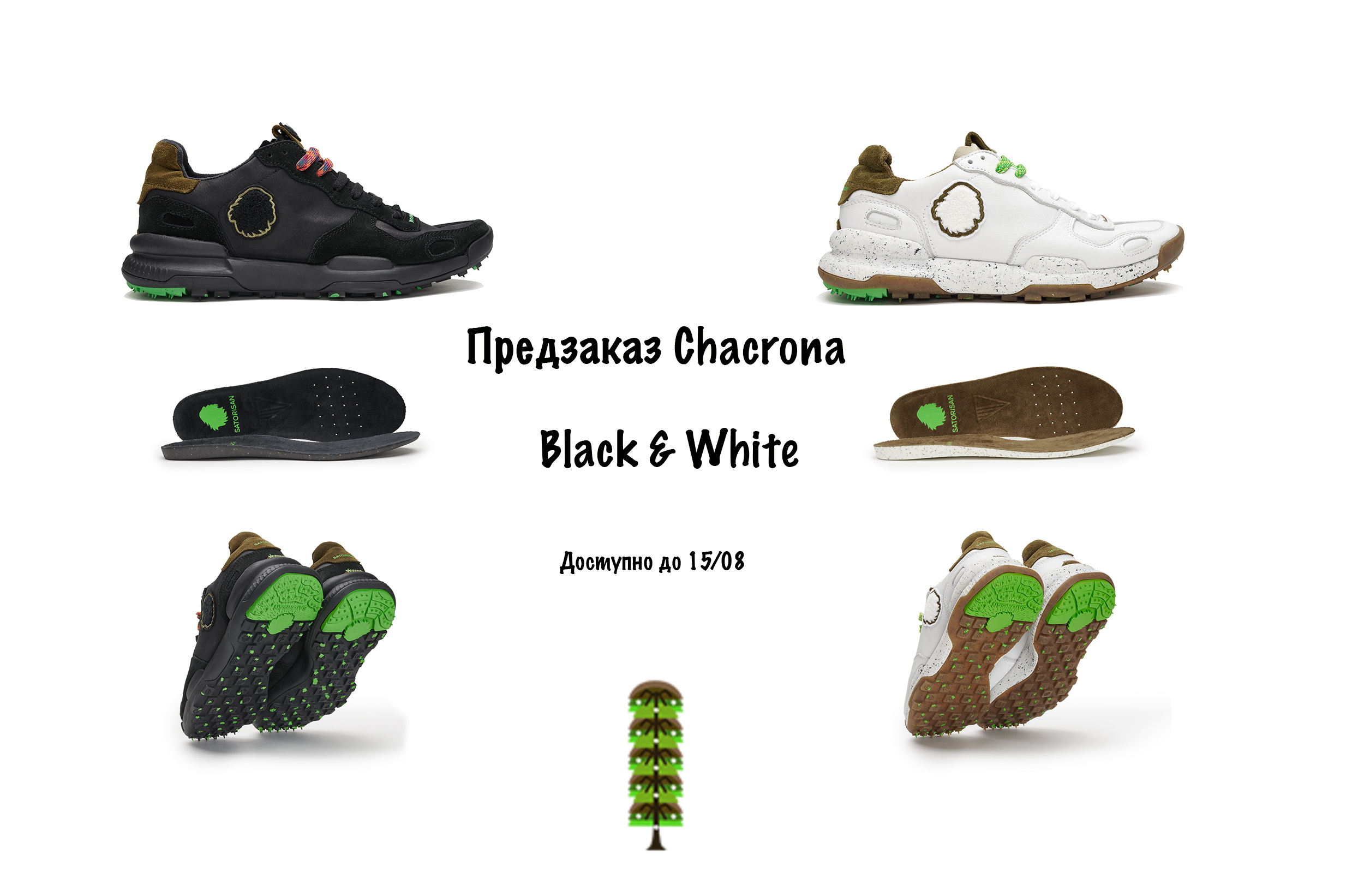 chacrona preorder