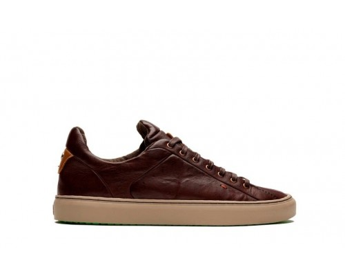 SOMERVILLE Pull Up - Polo Brown